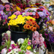 Flower market — Stockfoto