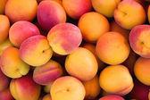Apricots background — Foto Stock