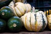 Λαχανικά του φθινοπώρου — 图库照片