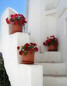 Greek steps — Stock Photo