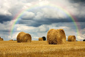 Harvest strorm with rainbow — Stock Photo