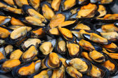 Mussels at the market — Stock Photo