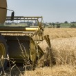 Royalty-Free Stock Photo: Combine harvester