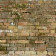 Old brick wall with moss — Stock Photo