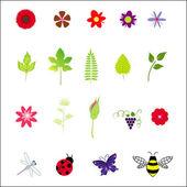 矢量花卉元素和昆虫 — 图库矢量图片