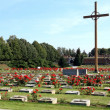 Cemetery in Terezin - holocaust — Stock Photo