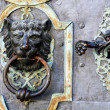 Metal door knocker — Stock Photo