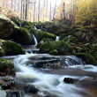 Mountains creek in autumn — Stock Photo