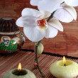 Stock Photo: Orchid flower and candle