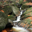 Mountains creek in autumn — Stock Photo #2327792