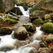 Mountains creek in autumn — Stock Photo #2334936