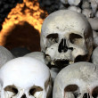 Skulls in the catacombs — Stock Photo