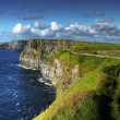 Cliffs of Moher — Stock Photo #2196234