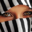 Stock Photo: Arabic beauty eyes