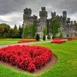 Ashford castle and gardens - Stock Photo