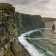 Cliffs of Moher at sunset — Stock Photo #2347607
