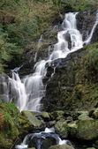 Torc waterfall - Ireland — Stock Photo