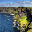 Cliffs of Moher - panoramic — Stock Photo #2406192