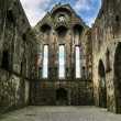 Stock Photo: Rock of Cashel - ruins interior