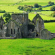 Old Abbey in Cashel — Stock Photo #2422611