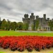 Ashford castle — Stock Photo