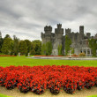 Ashford castle - Stock Photo