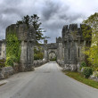 Entrance to Ashford castle - Stock Photo