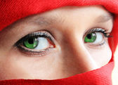 Green eyes ninja — Stock Photo