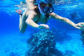Snorkeling in red Sea — Stock Photo