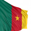 Royalty-Free Stock Photo: 3D Flag of Cameroon
