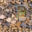 Foto Stock: Woodpile
