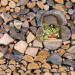 Foto de Stock  : Woodpile