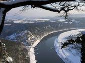 冬季景观 — 图库照片