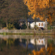 Pond and an old house — Stock Photo