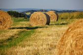 Baled straw — Stock Photo