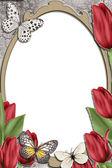 Cornice decorativa con tulipano — Foto Stock
