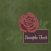Flower wedding background or invitation — Stock Photo