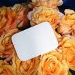 Stock Photo: Card for anniversary or congratulation w