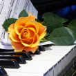 Rose on musical note — Stock Photo #2313810
