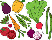 Vegetable Series — Stock Vector