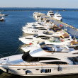 White yachts and motor boats - Stock Photo