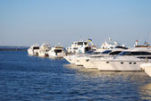 White yachts and motor boats — Stock Photo