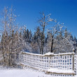 Winter landscape with snow fence — Stock Photo