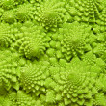 Cabbage romanesco background — Stock Photo #2259521