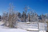 Paisaje de invierno con nieve cerca — Foto de Stock