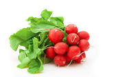 Bunch of radishes — Stock Photo