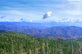 Great Smoky Mountains, USA — Stock Photo