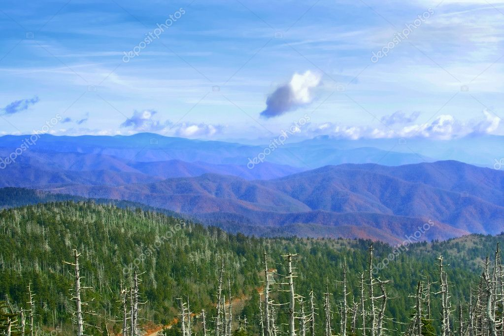 Great Smoky Mountains, USA — Stock Photo #2259726