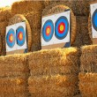 Stock Photo: Bow targets in row