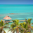 Isla Contoy, Mexico — Stock Photo #2262698
